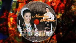 NICULINA STOICAN  COLAJ ALBUM  ANII REPEDE AU TRECUT