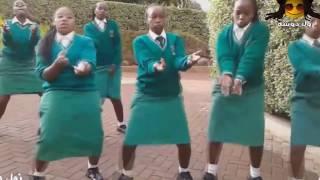 رشا الزنجية جديد زنق سوداني 2017 جودة HD