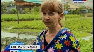 В Новобурейском затопило несколько приусадебных участков