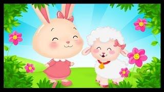Marie a un petit agneau