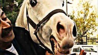 Düzenbaz Tırınını At Yarışı İşine Girdi   Full Sıyrıl Da Gel Sinan   145. Bölüm