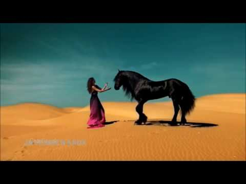 Xxx Mp4 The Most Beautiful Persian Iran Love Song Ever Aryan 3gp Sex