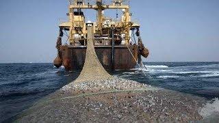 وثائقي أساطيل صيد السمك في الاطلسي المغرب موريتانيا واستغلال للمنطقة