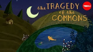 What is the tragedy of the commons? - Nicholas Amendolare