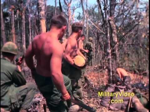 Xxx Mp4 Operation MacArthur 4th Infantry Division Dak To 1967 Vietnam War 3gp Sex