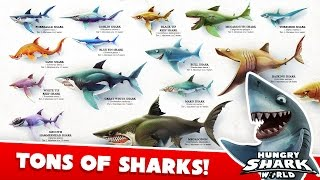 Hungry Shark World - All Sharks Montage (With Megalodon!)