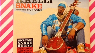 R. KELLY CD SINGLE SNAKE FEATURING BIG TIGGER REVIEW COLLECTION