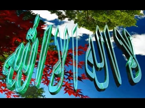 Pashto Hamad Dawodshah Mukjlis La Pak Nama Di Sham Pida