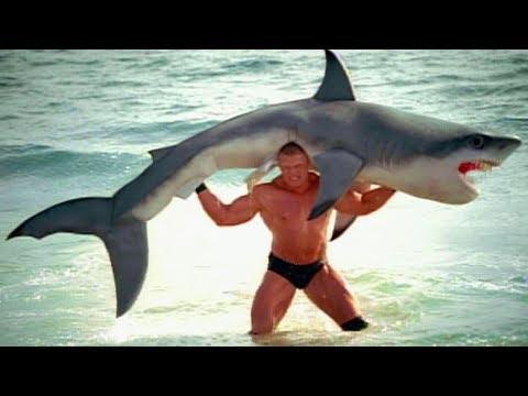 Brock Lesnar F5s a shark SummerSlam 2003 commercial