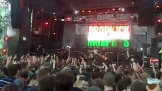 Dropkick Murphys - Intro + The Boys Are Back @ Live Budapest Park 2014 (Hungary)
