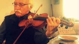 Perisan Violin by master Shamloukia - یااستاد شاملوکیا -  ویلن - سوز ساز (دو ضربی سه گاه)
