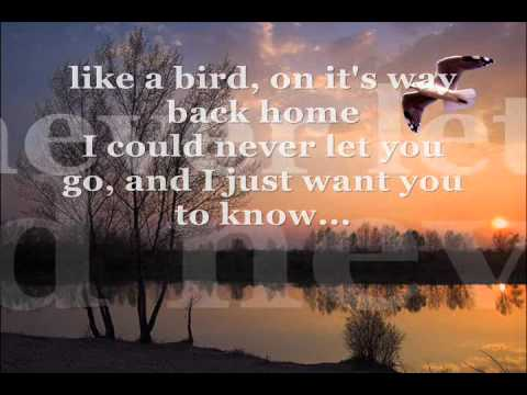 I Can Wait Forever- Air Supply with lyrics Video Clip