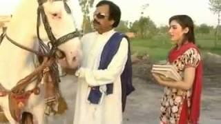 Secret Of Chaudhary Sahab