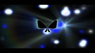 Butterfly Intro Idea no 1 for Paradigm TV after effects