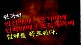 인신매매, 장기매매 인육매매의 실체!! - 괴담으로 물타기 하지마라!!
