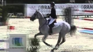 Show jumping!!! ;]]