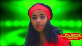 NEW oromo music SEENAA KAMAAL2016