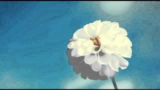 اجمل تلاوات الشيخ منصور السالمي (جودة عالية)