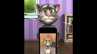 Talking Tom cat 123456