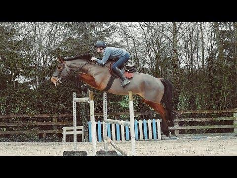 Xxx Mp4 SEEING HOW HIGH MY HORSE CAN JUMP 3gp Sex
