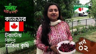 Yard farming | EPISODE 02 | HD | Shykh Seraj | Channel i | আঙিনা কৃষি |