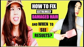 How To Really Fix Extremely Damaged Hair And When To See Results?- Beautyklove