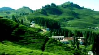 New nepali video song mp4