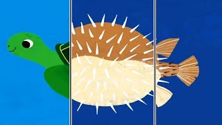 Play ANIMALS MATCH UP ! Learn The Names Of Sea Animals - Educational Children Game
