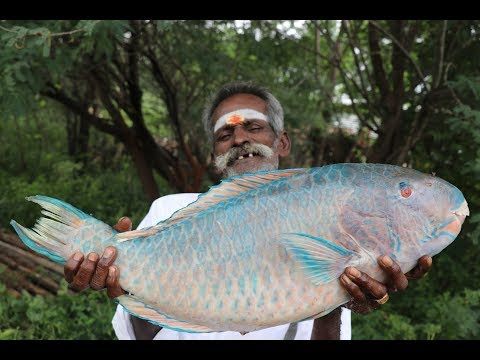 Xxx Mp4 Parrot FISH Prepared By My Daddy In My Village Village Food Factory 3gp Sex