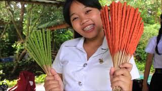 """""""Thoophom Sa-mhun Prai"""" : English for Business Presentation (03-612-413)"""