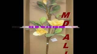 bangla music balam
