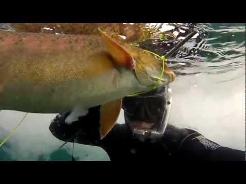 подводная рыбалка в сибири видео