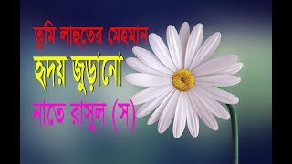 Naat E Rasul (SM) | Bangla Islamic Song 2018 |tumi lahuter mehman|islami song | Islamic culture bd |