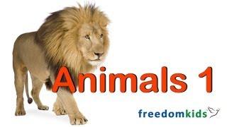 Kids Bible Videos - Animals Part 1  | Freedom Kids
