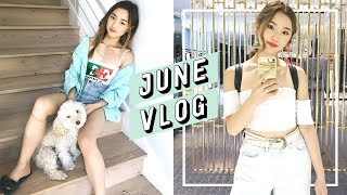 Moving Into Our New Home + Tokyo Trip | June Vlog