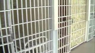 WSYR Total 3 News - inside Attica prison - 3/13/78 - Syracuse NY