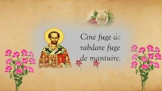 Sf. Ioan Gura de Aur - Despre smerenie si multumire