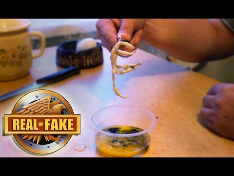 HOMUNCULUS CREATURE real or fake