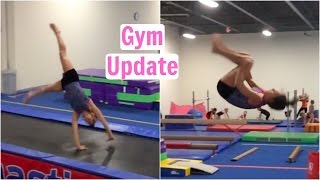 Updated Skills in the Gym!! Everyday Gymnastics