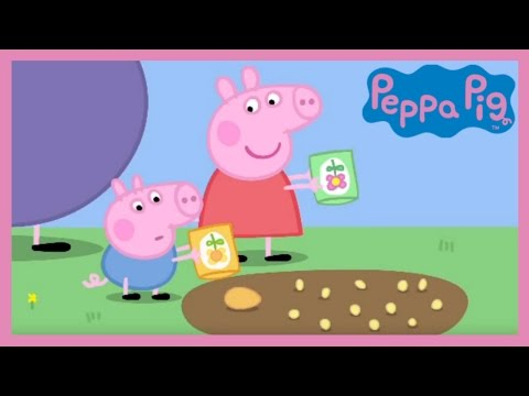 Peppa Pig Peppa and George s Garden Full Episode