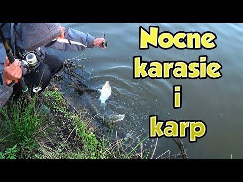 Xxx Mp4 NOCNE KARASIE I KARP ŁOWISKO KARP ŁAZY 3gp Sex