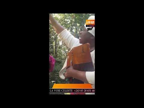 Xxx Mp4 Ba Maman Pasteur Na Katanga Ba Tomboki Pona Mboka Botala Makambo Ba Sali Na Source Ya Fleuve Congo 3gp Sex