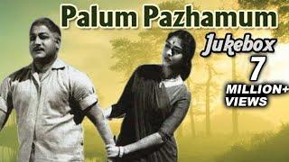 Palum Pazhamum Tamil Movie Songs Jukebox - Sivaji Ganesan, Saroja Devi - Classic Songs Collection