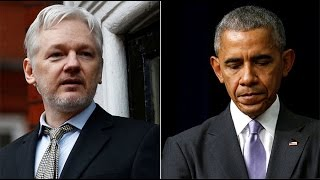'Our source was not the Russian government' – Julian Assange, WikiLeaks founder