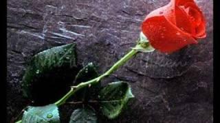 LeAnn Rimes - Some Say Love/The Rose
