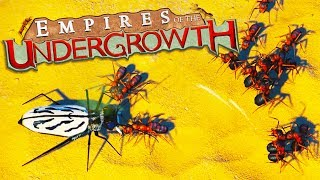 TIGER BEETLES and WOLF SPIDER INFESTATIONS! - Empires of the Undergrowth Gameplay