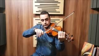 آموزش ویلن - تکنیک های آرشه کشی10 - ایمان ملکی- زمستان 95.mp4