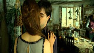 Harry Potter and Ginny Weasley Makeout