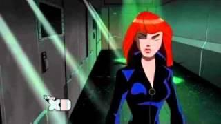 Black Widow's Poison