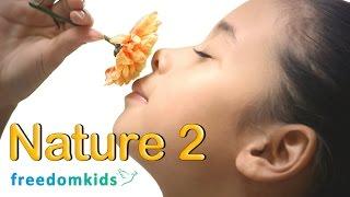 Kids Bible Videos - Nature Part 2   Freedom Kids